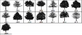 Trees Brush Pack 1