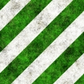 Green Stripes 1